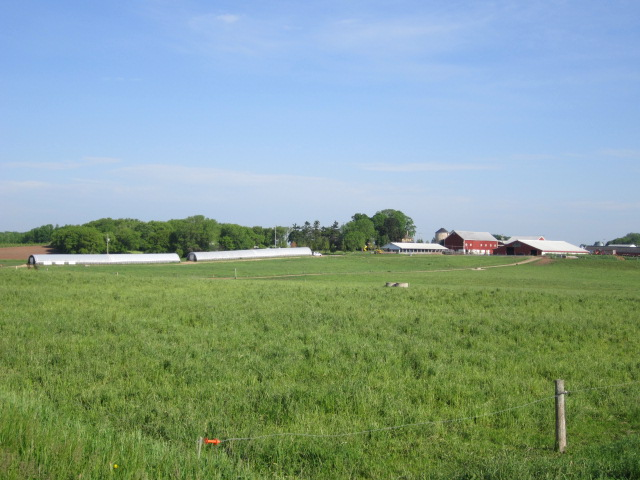 Saxon Homestead Farm