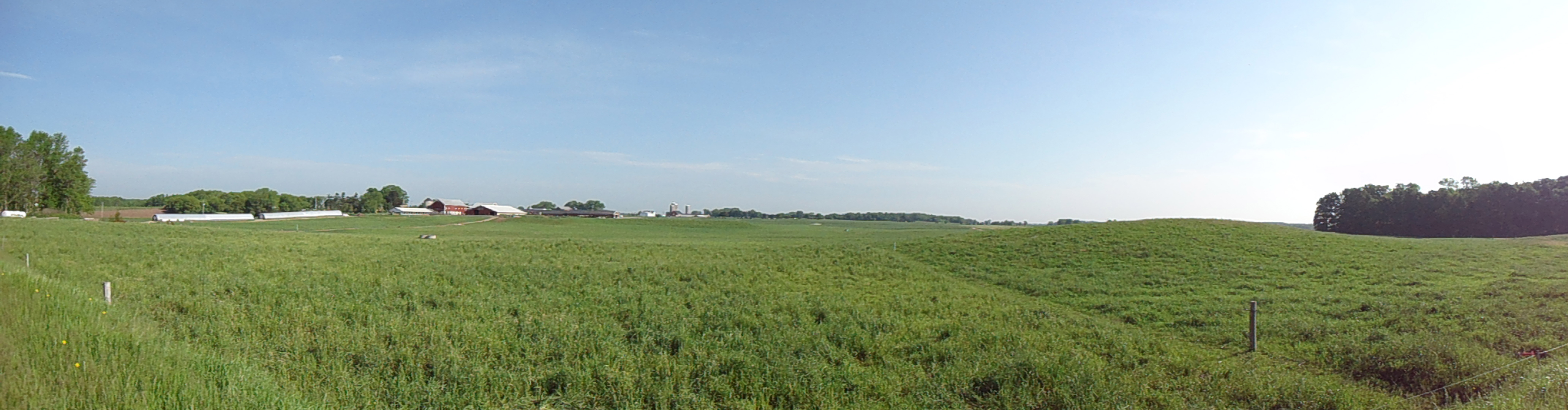 panorama of Saxon Homestead Farm