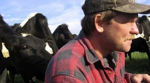 Robert Klessig sits in the pasture surrounded by curious cows.