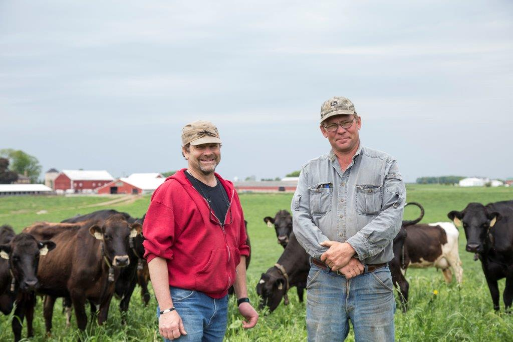 Karl and Robert Klessig stand in the pasture with their cows in front of Saxon Homestead Farm.